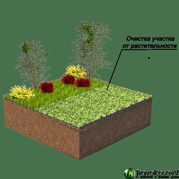Очистка от растительности