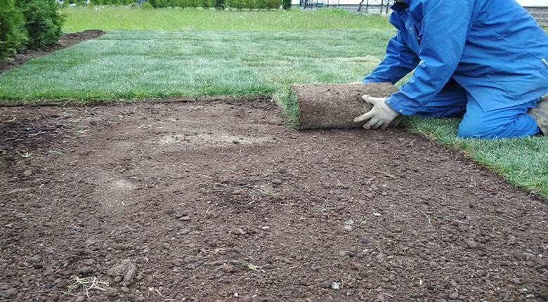 Рулонный газон монтаж